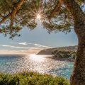 Wohin Sie von Nizza aus reisen können