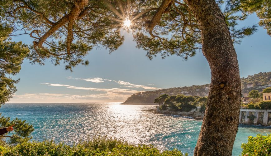 Where You Can Travel To From Nice
