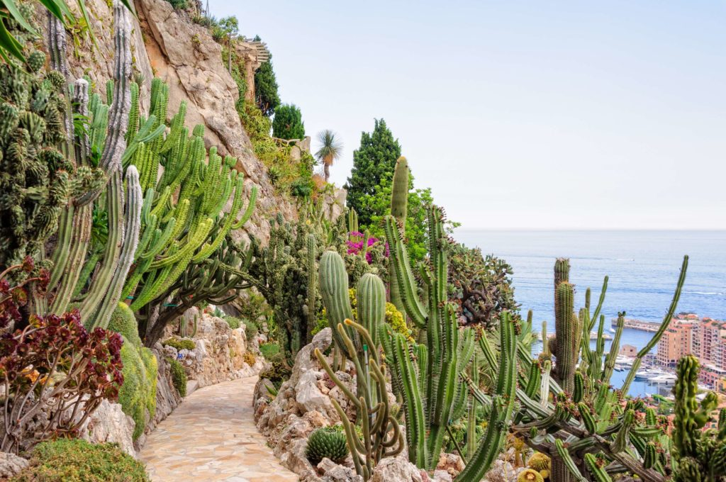 monaco-day-trip-jardin-exotique