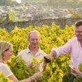 vineyard tours nice france
